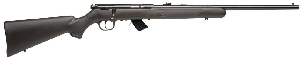 Pack 22LR SAVAGE Arms