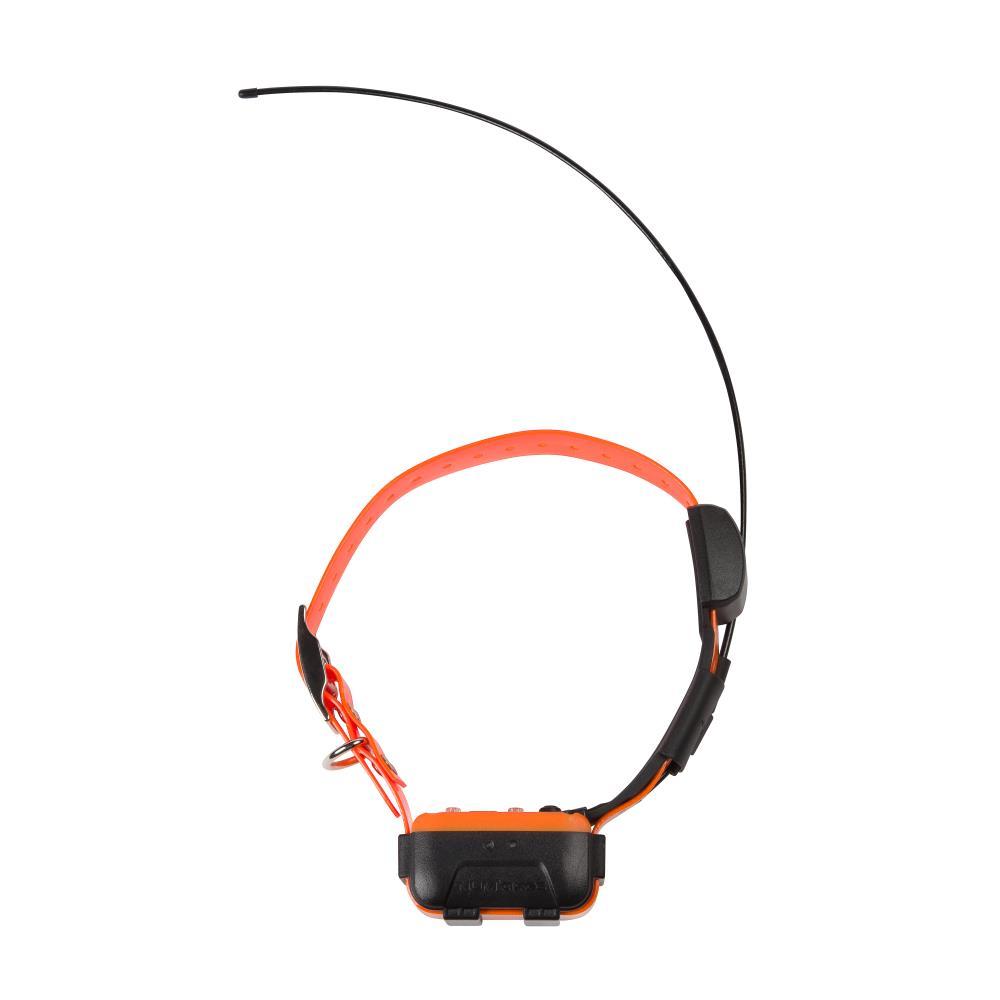 Collier GPS 2 en 1 Canicom : Collier supplémentaire