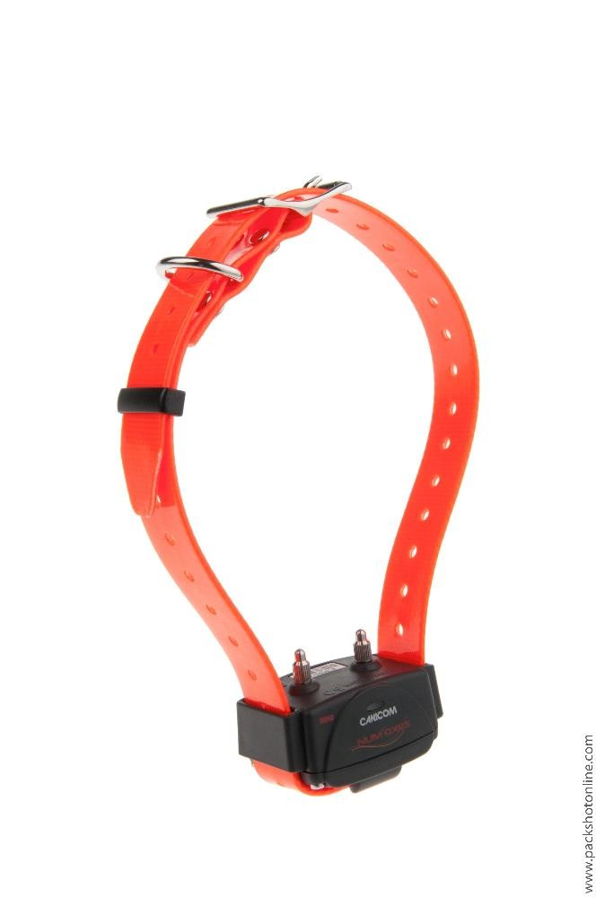 Collier supplémentaire Canicom sangle orange