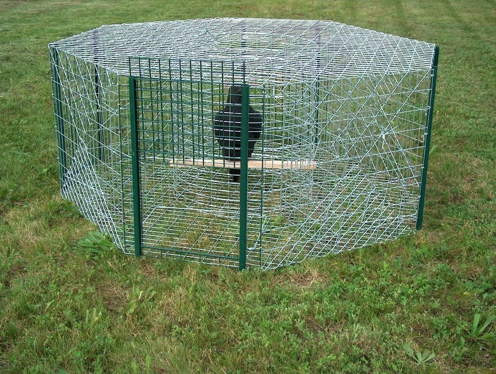 Cage à corbeau octogonale