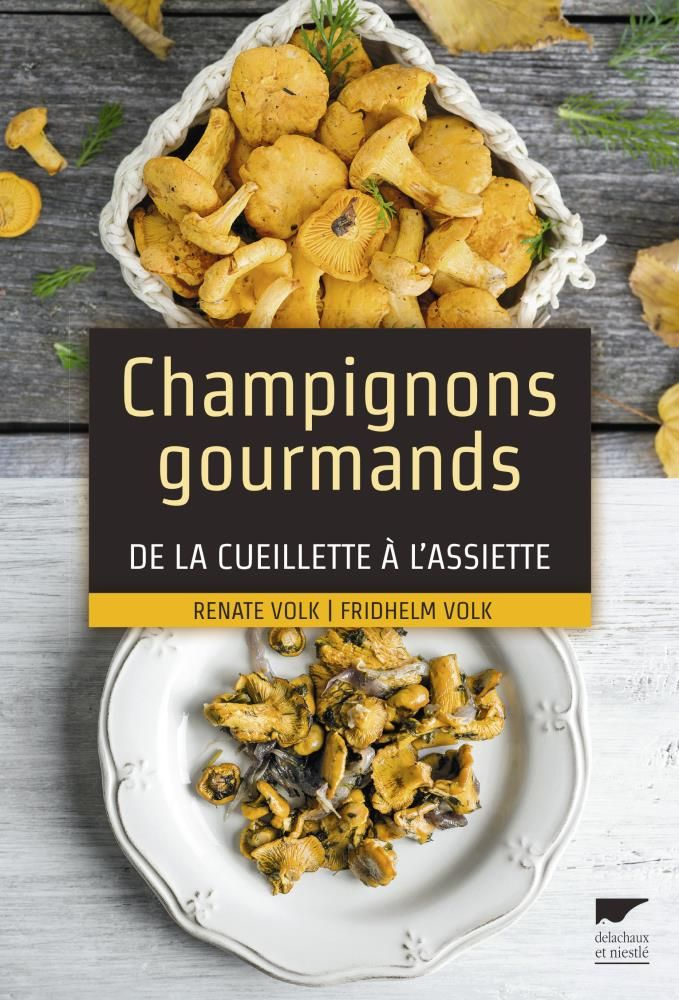 Livre champignons gourmands cueillette assiette