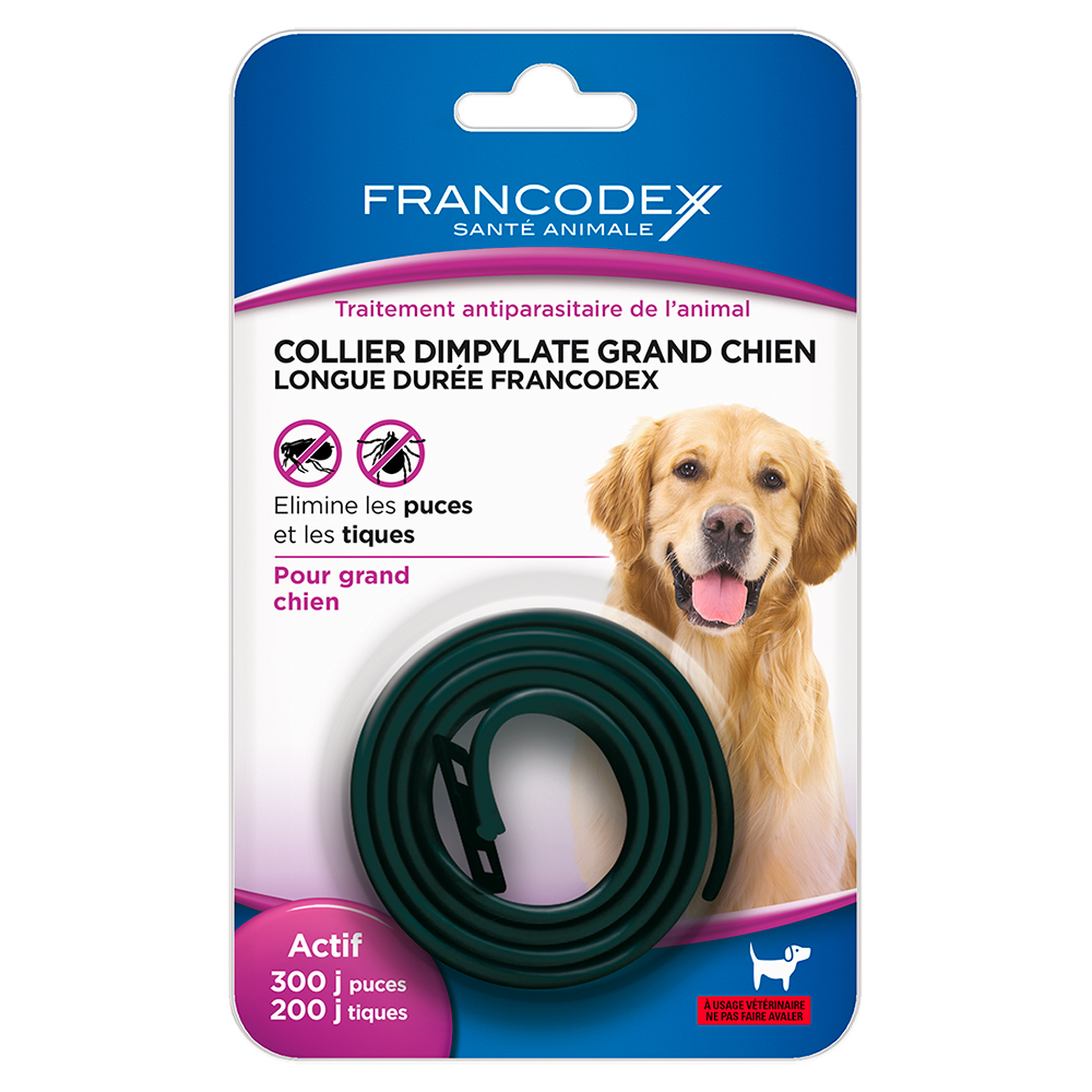 Collier insecticide grand chien