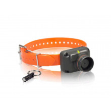 Collier STB Beeper - L Dogtra