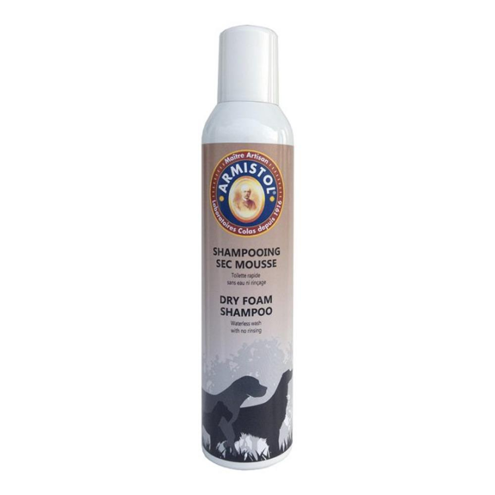 Shampoing sec mousse 300 ml